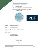 Seguridad Industrial Monografia