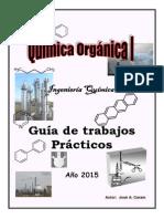 Guia Quimica Organica I 2015