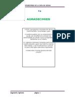 Fotosintesis de La Caña de Azúcar-Monografía