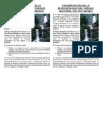 CONSERVACIÓN DE LA BIODIVERSIDAD DEL PARQUE NACIONAL DEL RIO ABISEO.docx