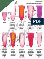 Tongue Chart Postcard Copy2