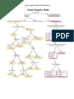 Flowcharts Lindos de Bacteriologia