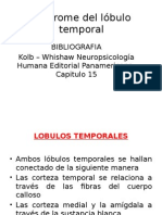 Unidad IV Sindromes Temporal Diapo