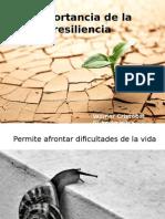 Importancia de La Resiliencia