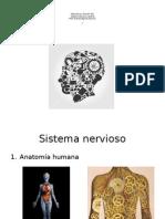 00. Estructura y Función Del Sistema Nervioso