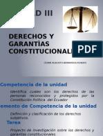 Derechos y Garantìas Constitucionales