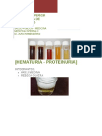 Hematuria Proteinuria