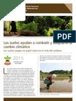 Los suelos ayudan a combatir y adaptarse al cambio climático