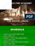 VFA Ladders.ppt