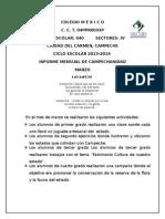 Informe de Campechanidad MARZO 2014