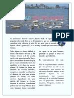 El mar en peligro.docx