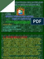 Exposicion -Diagnostico Final