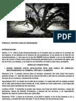 LAS 7 SOMBRAS.pdf