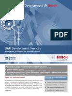 SAP Development Flyer
