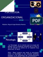 Psicologia Organizacional Presentacion Powerpoint