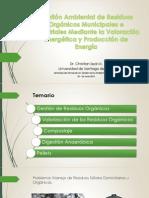 Gestión Ambiental de Residuos Orgánicos Municipales e Industriales Mediante la Valoración Energética y Producción de Energía