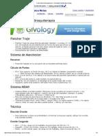 Cuello Uterino Braquiterapia - Oncología Radioterápica Notas