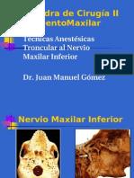 Anestesia Al Nervio Maxilar Inferior