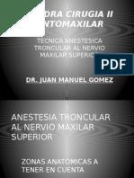 Anestesia Al Nervio Maxilar Superior