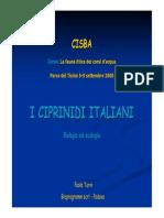 8Pesci Turin