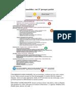 15. Postuler Dans l'Immobilier. Un CV Presque Parfait. PDF