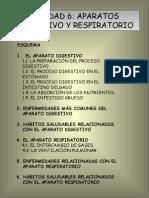 Unidad 6. Aparatos Digestivo y Respiratorio