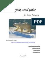 Fram pentru scoala.pdf