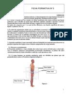 Ficha Formativa_5 Correcção