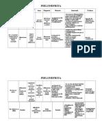 Plan de Ingrijire Pielonefrita
