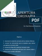 APERTURA CORONARIA MOLARES