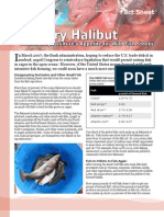 Hungry Halibut