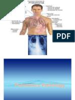 Presentation1 Pneumonia