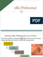 Desarrollo Pulmonar