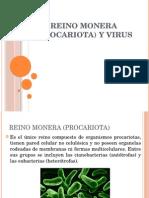 Reino Procariota Monera y Virus
