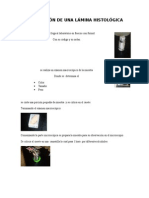 hisquimica y citologia