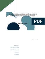 Puebla Informe Final