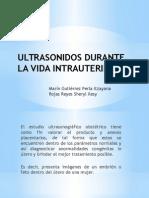 Ultrasonidos Durante La Vida Intrauterina
