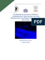 microbiologia micorrizas