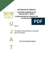 """Tema 3  """"Diversidad cultural ampliada y educación para la diversidad"""""""