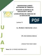 Tema 11 el mundo indígena 2015