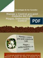Manejo y Control Del Café