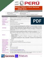 Segmentación ideológica de los peruanos, encuesta Datum junio 2015
