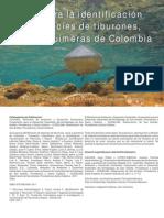 2011 Guia Tiburones Rayas y Quimeras de Colombia Baja Resolucion
