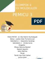 PLENO PEMICU 3