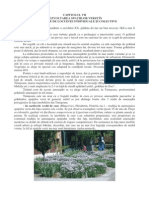 cap VII strategie sp_verzi 2010-2020.pdf