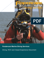 Diving ROV Experience Summary