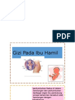 Gizi Ibu Hamil - KP Dr.louisa
