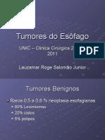 Tumores Do Esc3b4fago2