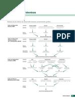PNUD (2011) -Informe Del Desarrollo Humano, Notas Técnicas