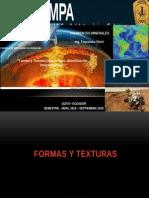 Formas y Texturas (alteraciones, skarnificaci+¦n, metasom+íticos)